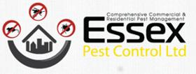 Essex Pest Control - Case Studies