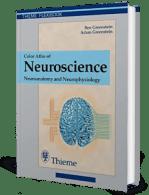 Color Atlas of Neuroscience Neuroanatomy and Neurophysiology –  Ben Greenstein, Adam Greenstein