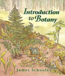 introduction to botany pdf,introduction to botany online course,introduction to botany textbook,introduction to botany powerpoint,introduction to botany ppt,introduction to botany murray nabors,introduction to botany alexey shipunov,introduction to botany book,introduction to botany and zoology,introduction to agricultural botany pdf,introduction to agricultural botany,introduction to economic botany and its scope,an introduction to the botany of tropical crops,introduction to plants and botany,introduction about botany,an introduction to botany,an introduction to botany pdf,an introduction to botany james lee,plant science an introduction to botany,plant science an introduction to botany pdf,plant science an introduction to botany the great courses,introduction to botany book pdf,introduction to botany berg pdf,introduction to botany berg,introduction to botany charm dead by daylight,introductory botany berg 2nd edition pdf,introductory botany berg,best introduction to botany book,introduction to botany course,introduction to botany charm dbd,introduction to botany course outline,introduction to crop botany,introductory botany course,city lit introduction to botany,introduction to botany pdf download,introduction to botany nabors pdf download,introduction to botany pdf free download,introduction to economic botany,introduction to economic botany ppt,introduction for botany,introductory botany fiu,intro to botany,introduction to general botany ppt,introduction to general botany,introduction to general botany pdf,the great courses introduction to botany,introduction to botany in montessori,introduction in botany,introduction to botany james lee,john lindley introduction to botany,introduction to botany lecture notes,introductory botany linda berg pdf download,introductory botany linda berg pdf,introductory botany linda berg,introduction to botany murray nabors pdf,introduction to botany murray pdf,introduction to botany nabors,introduction to botany nabors pdf,introduction to botany notes,botany an introduction to plant biology,botany an introduction to plant biology pdf,botany an introduction to plant biology pdf free download,introduction to botany online,introduction of botany,introduction of botany pdf,introduction of botany ppt,introduction to the science of botany,introduction to pharmaceutical botany,introduction to pharmaceutical botany with taxonomy,introduction to plant botany,introduction to botany quiz,introduction to botany slideshare,introduction to botany syllabus,introduction to systematic botany,introductory botany textbook,intro to botany pdf