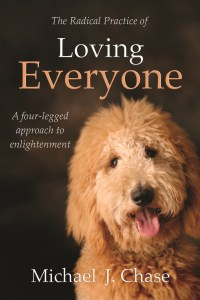Radical Practice of Loving Everyone book cover