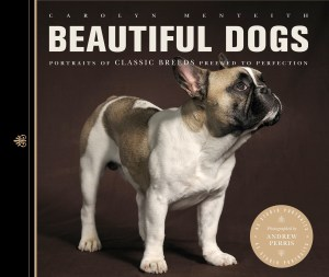 Beautiful Dogs book cover