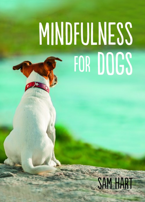 mindfulness for dogs_cover ideas 2.indd