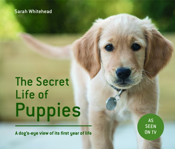 the-secret-life-of-puppies
