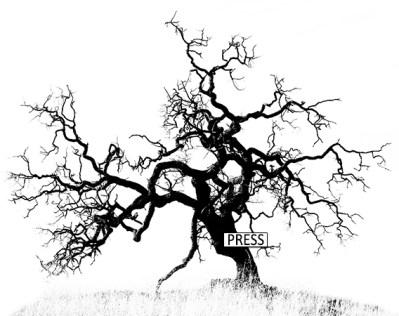 DeadtreePressPass1
