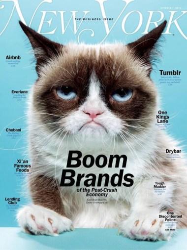 new-york-magazine-grumpy-cat