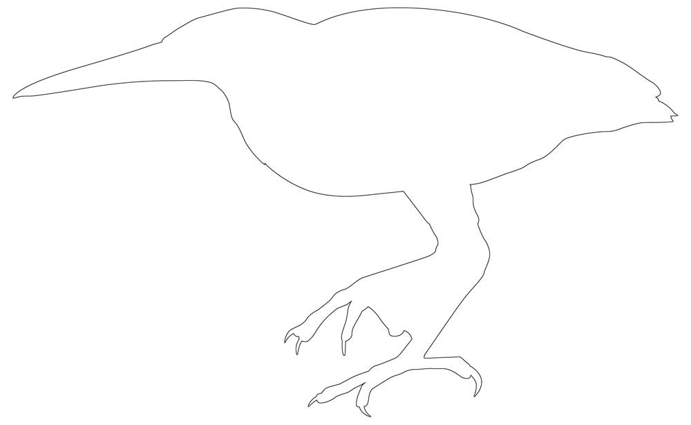 Bird Outline Bird Pattern Black White Line Drawing