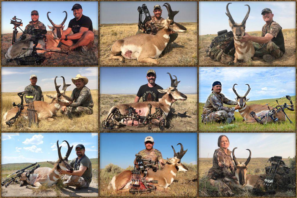 archery pronghorn hunting, free range american