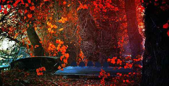 Mirchi Red Autumn Forest