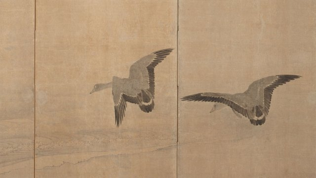 Detail of a screen, showing two flying ducks about to land on subtly rendered water.
