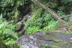 Waterfall top, looking down towards a ravine