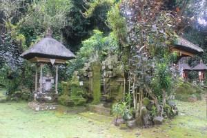 Overgrown shrine complex