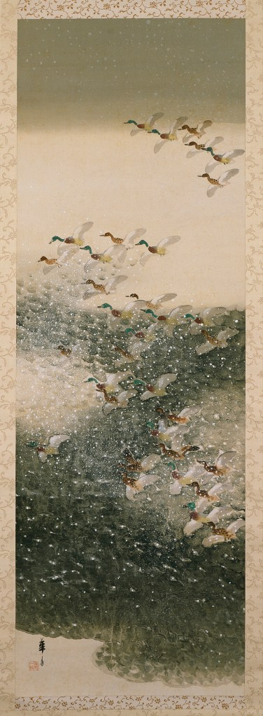 Waterfowl in Snow