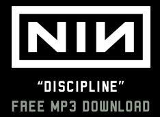 Free Nine Inch Nails Discipline MP3 download