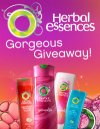 free_herbal_essences