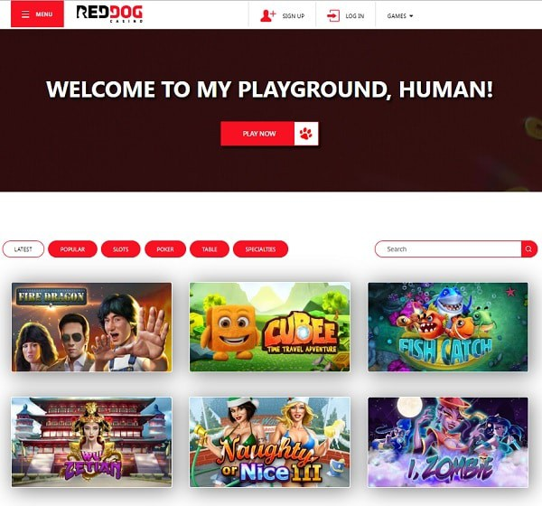 Red Dog Casino Review - rating 5/5