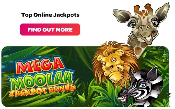 Spin Casino jackpot by Microgaming