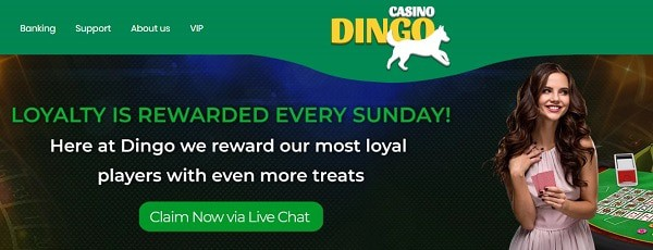 Casino Loyalty Promotions