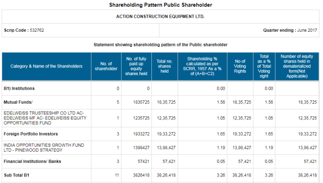 ACE Shareholding Pattern Public ShareHolder