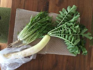 頂いた野菜