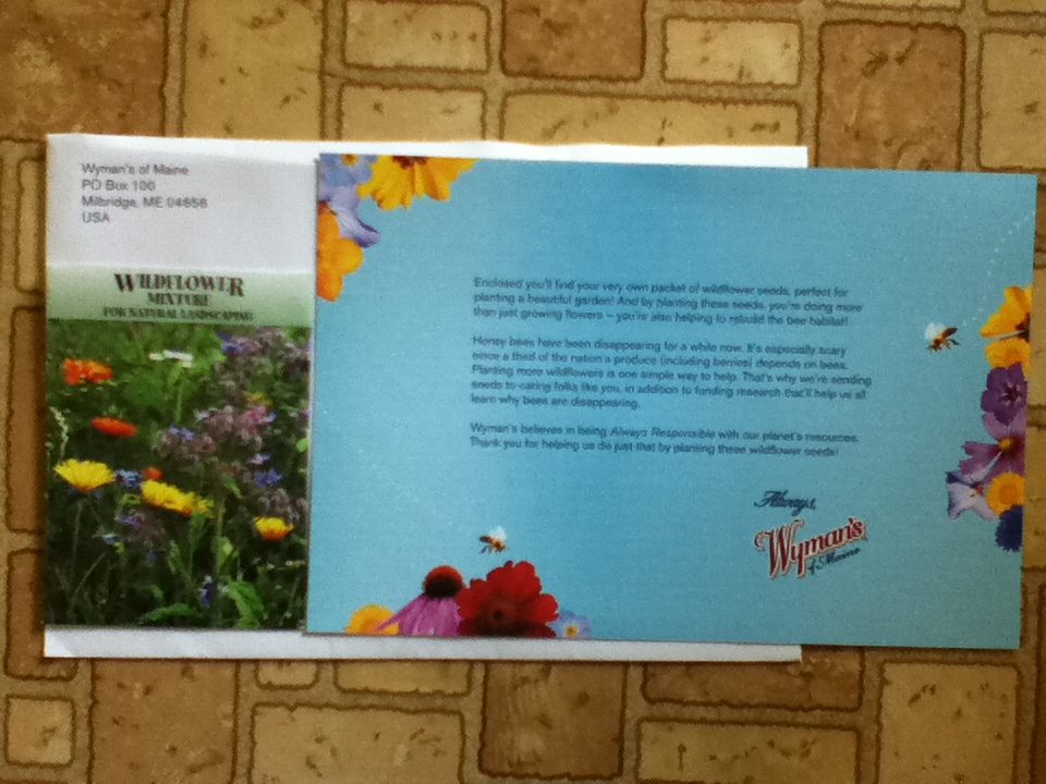 Free Wildflower Mixture For Natural Landscaping Seeds From