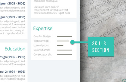 skills section