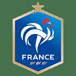 Lencana Tim Prancis