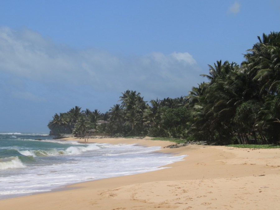 A beautiful beach inMirissa, Sri Lanka