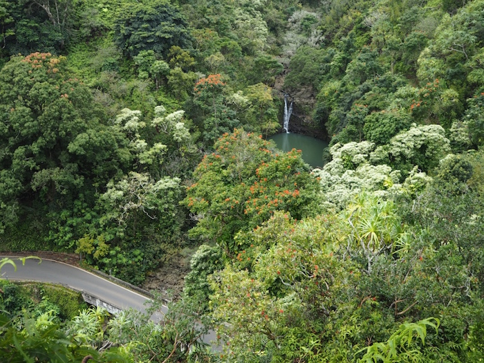 Stunning scenery on the Road to Hana.