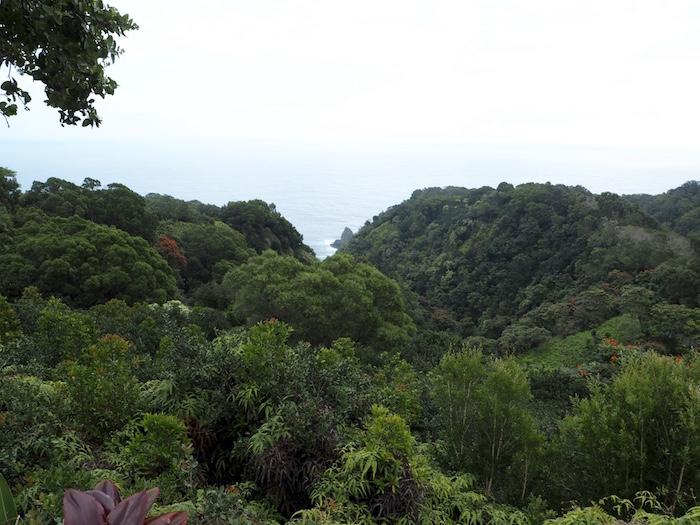 View from Keopuka Rock overlook in the Garden of Eden