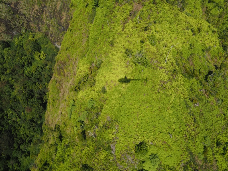Shadow of the helicopter in the crater