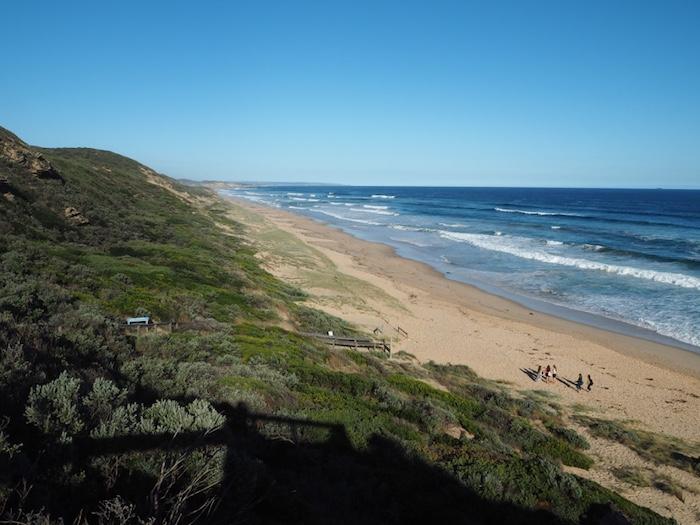 Portsea's wild back beach