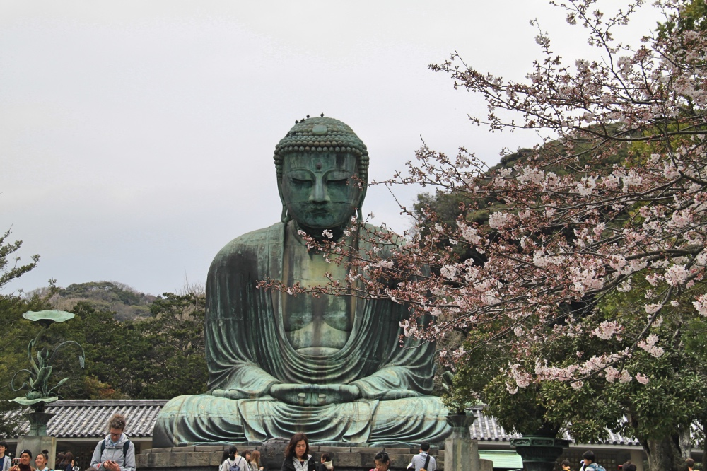 The big buddha with the remaining cherry blossoms.