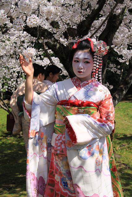 A wannabe geisha posing under the blossoms.