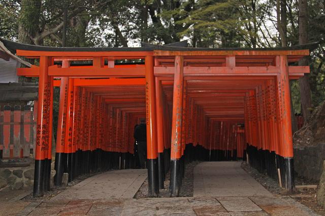 The many toris of the Fushimi Inari Taisha shrine.