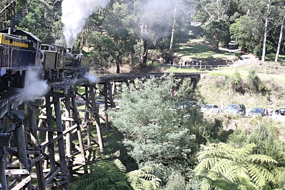 The old Puffing Billy train.