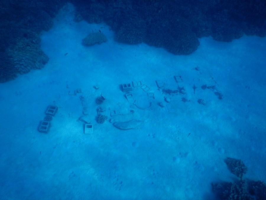Aloha written on the sea bed.