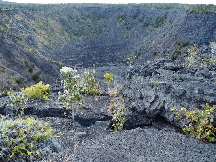 The Pauahi Crater on Chain of Craters Road.