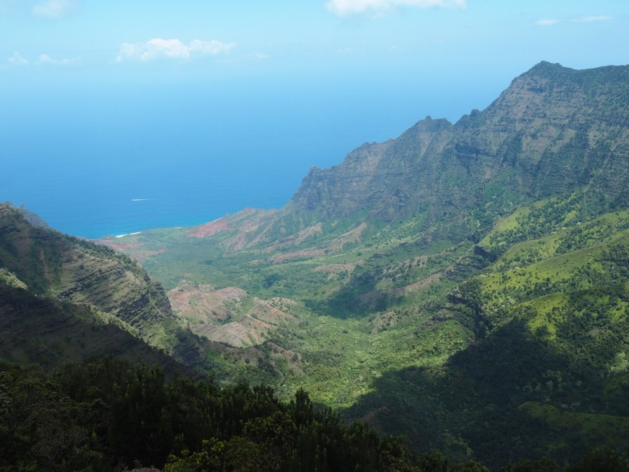 The spectacular view from the Pu'u O Kila Lookout.