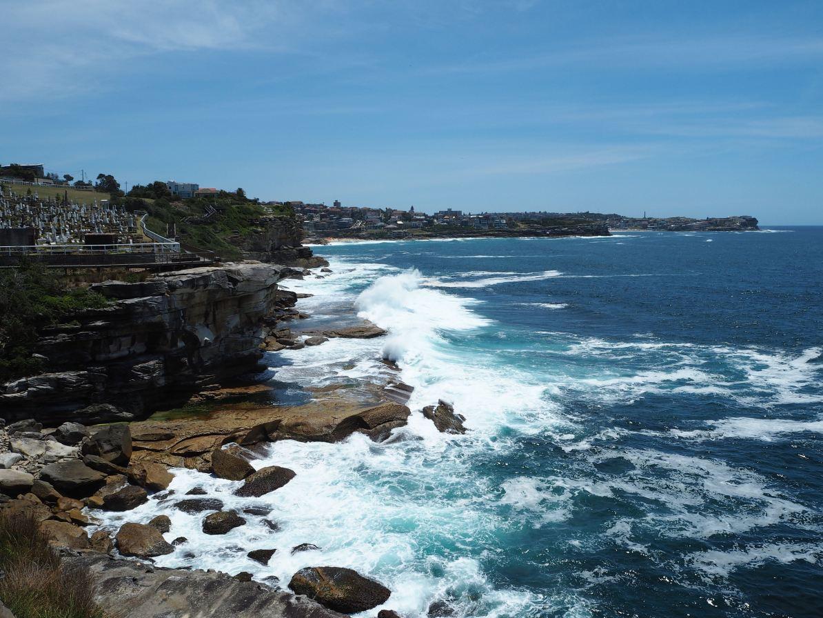 Stunning coastal views from the Coogee to Bondi Coastal walk.