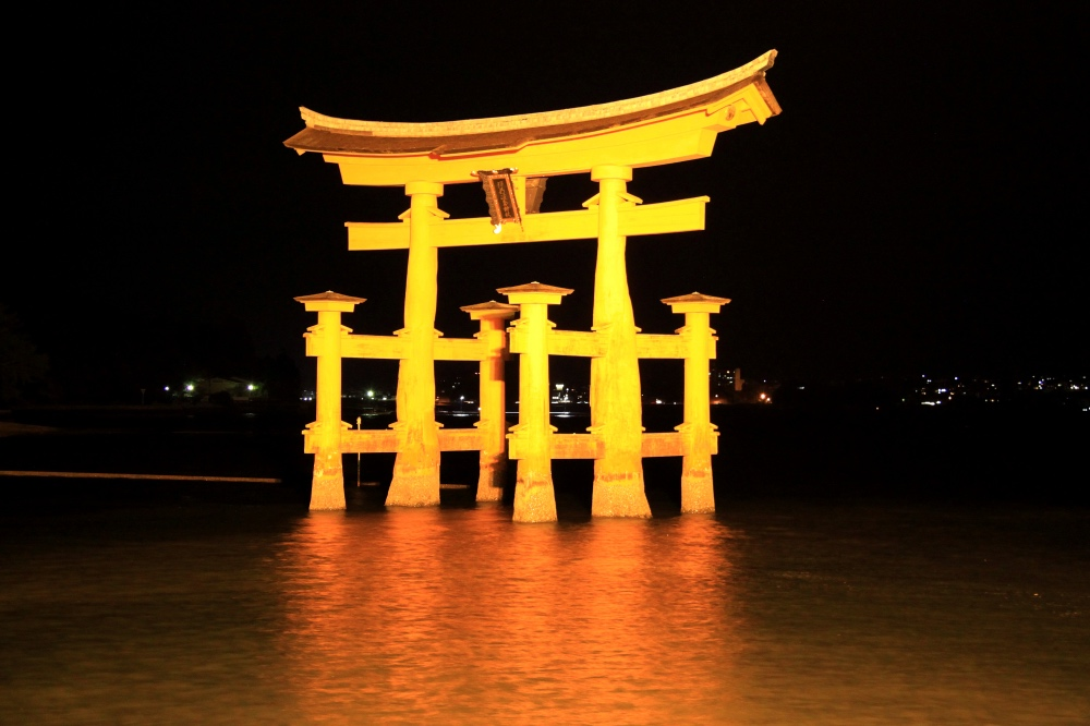 Night shot of the torii.