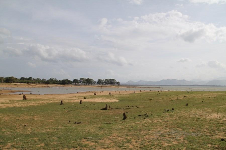 Inside Udawalawe National Park.