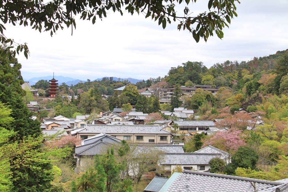 The view from the Daisho-in Temple