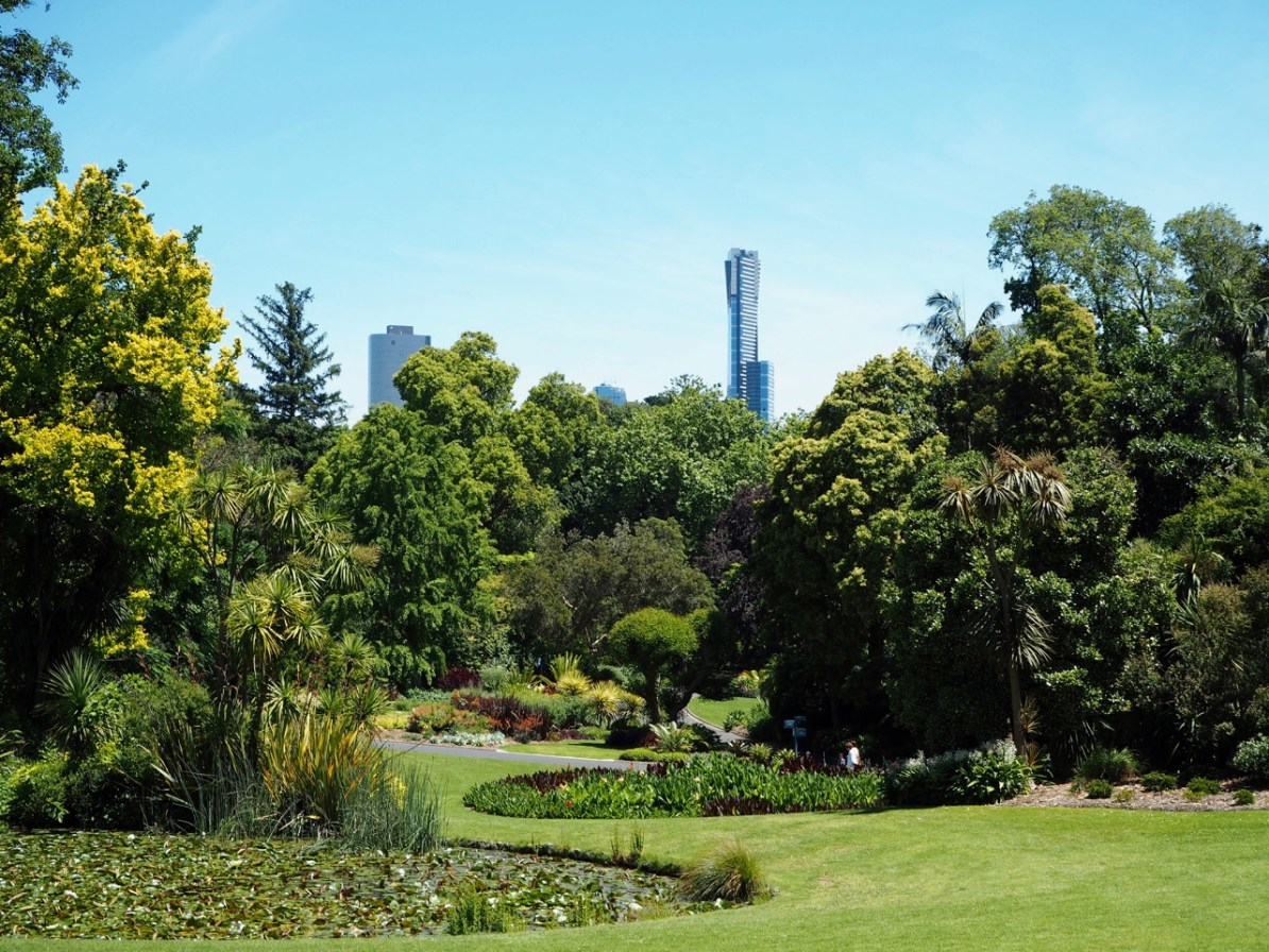 The Melbourne Royal Botanical Gardens.