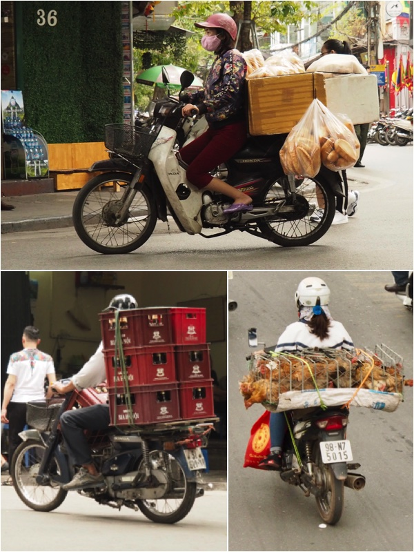 Food and Drink transport