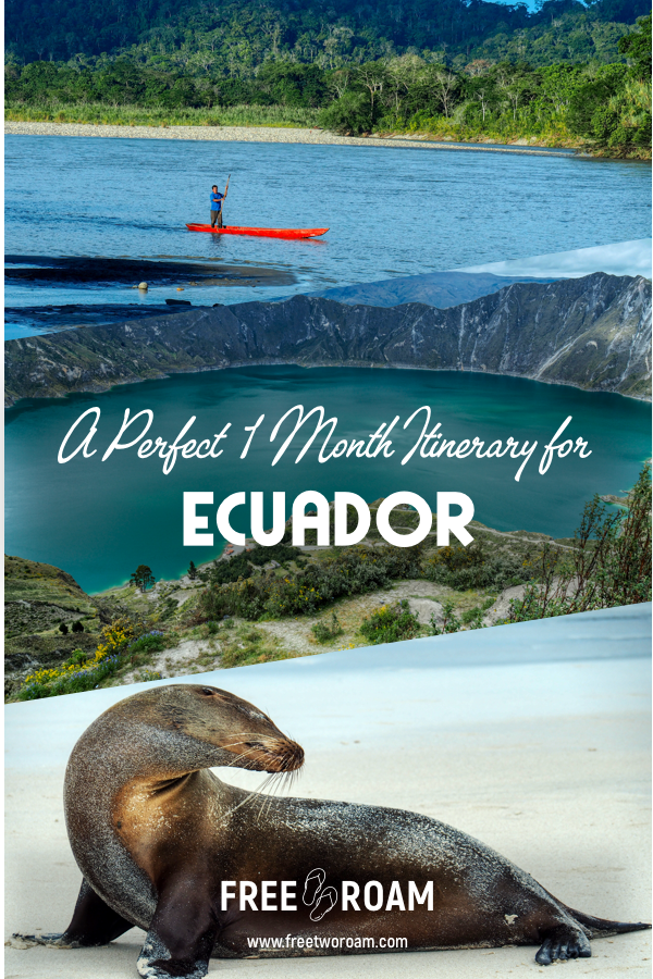 A Perfect One Month Itinerary for Ecuador