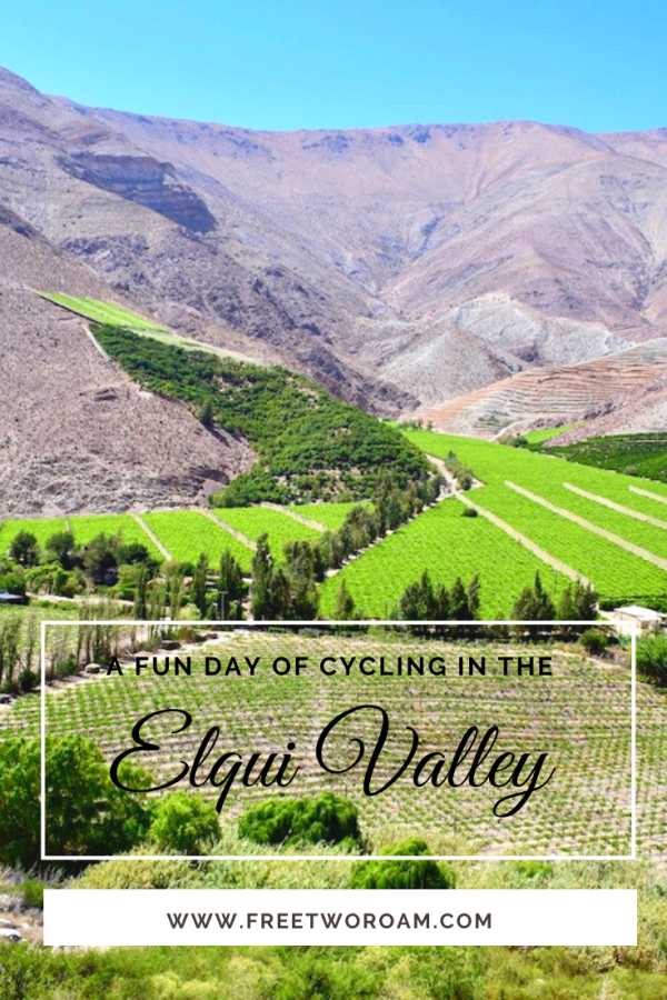 A Fun Day of Cycling in the Elqui Valley, Chile