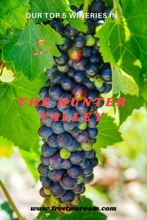 Our Top 5 Wineries in the Hunter Valley