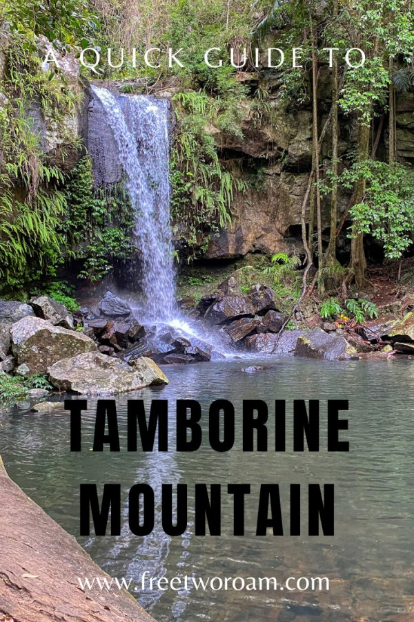 A Quick Guide to Tamborine Mountain