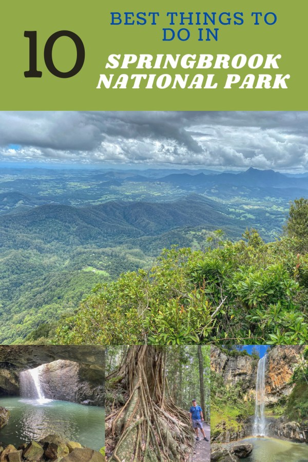 Springbrook National Park: The Top 10 Things to Do