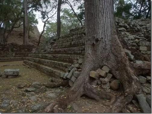 Copan Ruin Ruinas Honduras 5